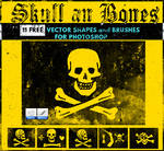 Skull Vector Shapes and Brushes