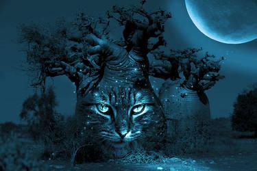 Night Cat by PsdDude