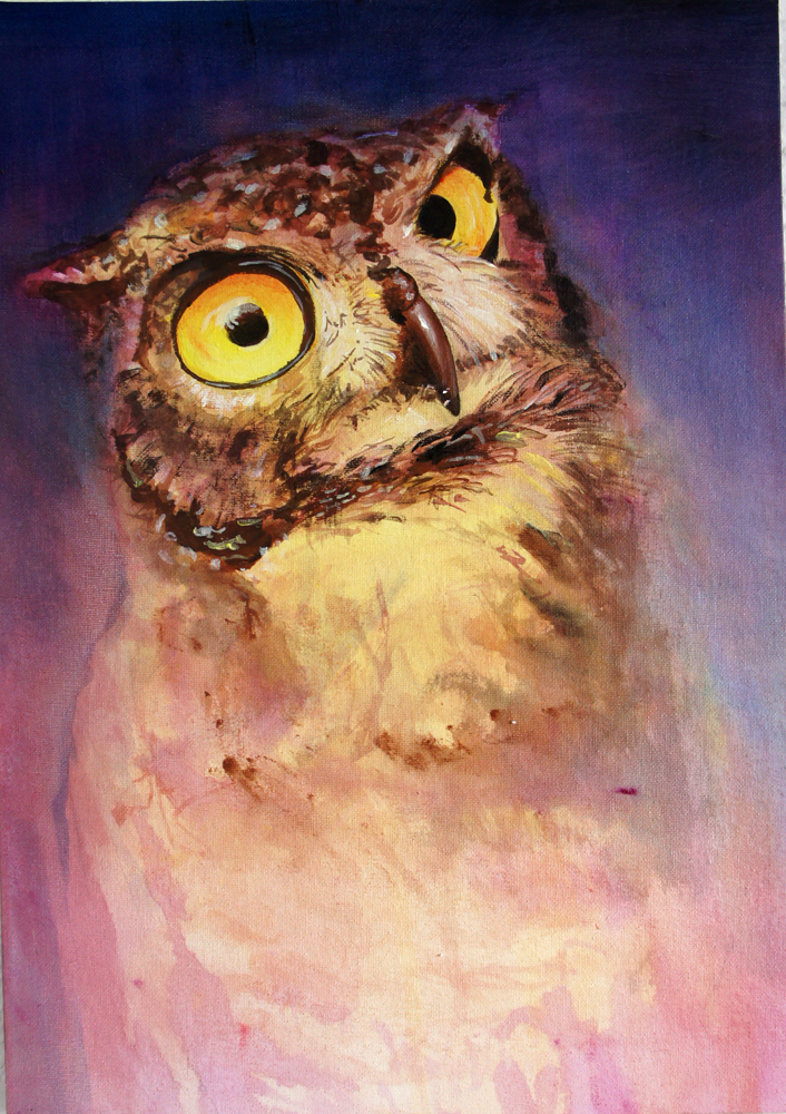Big Eyed Owl by 8025glome