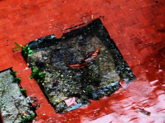 Red rain, brown leaves