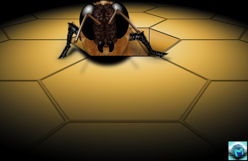 Birth of a bee by MadJikf59