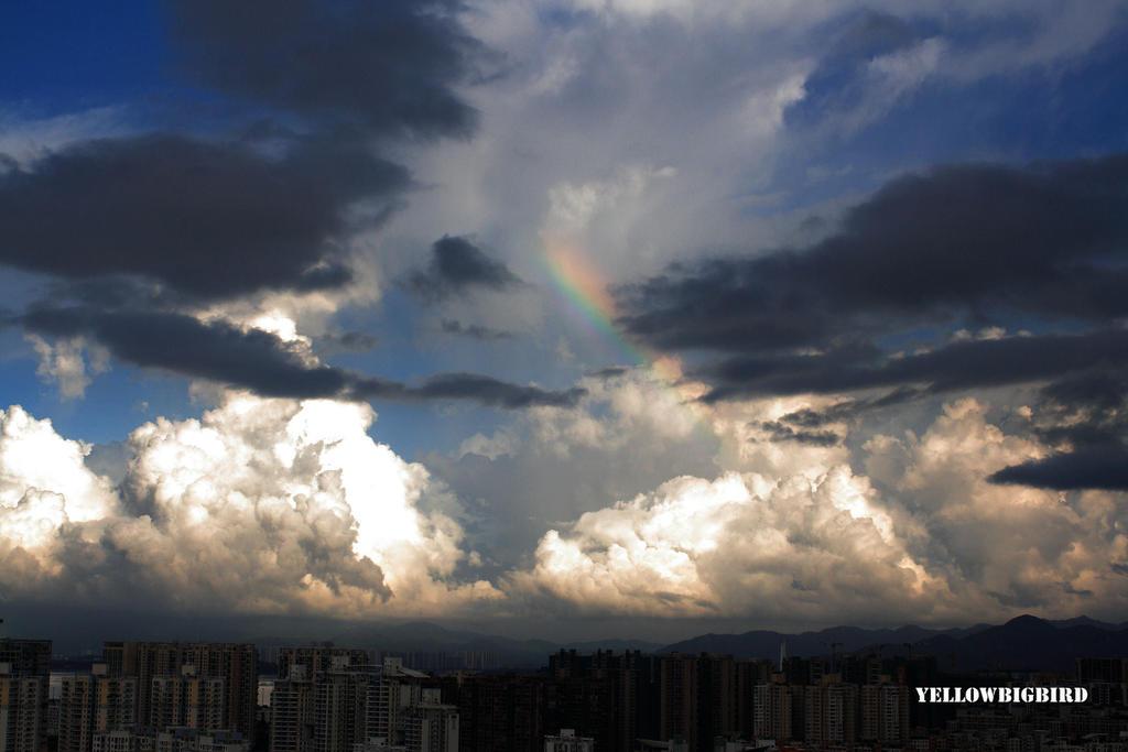 rainbow by yellowbigbird