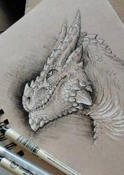 Toned dragon portrait