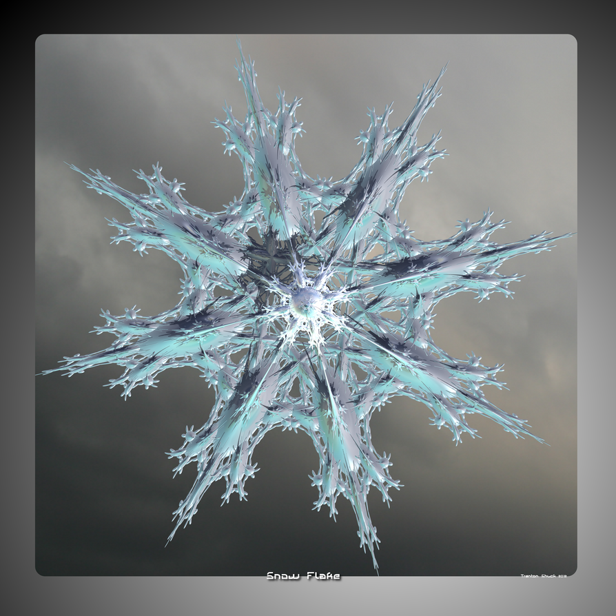 Snow Flake by Trenton-Shuck