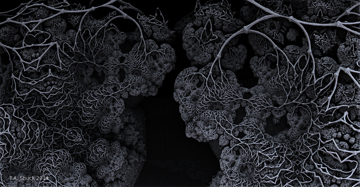 Boney Blooms by Trenton-Shuck