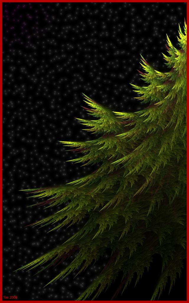 Evergreen by Trenton-Shuck