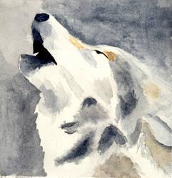 International Wolf Day 2020
