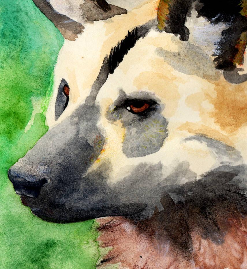 Internationa African Wild Dog Day 2020
