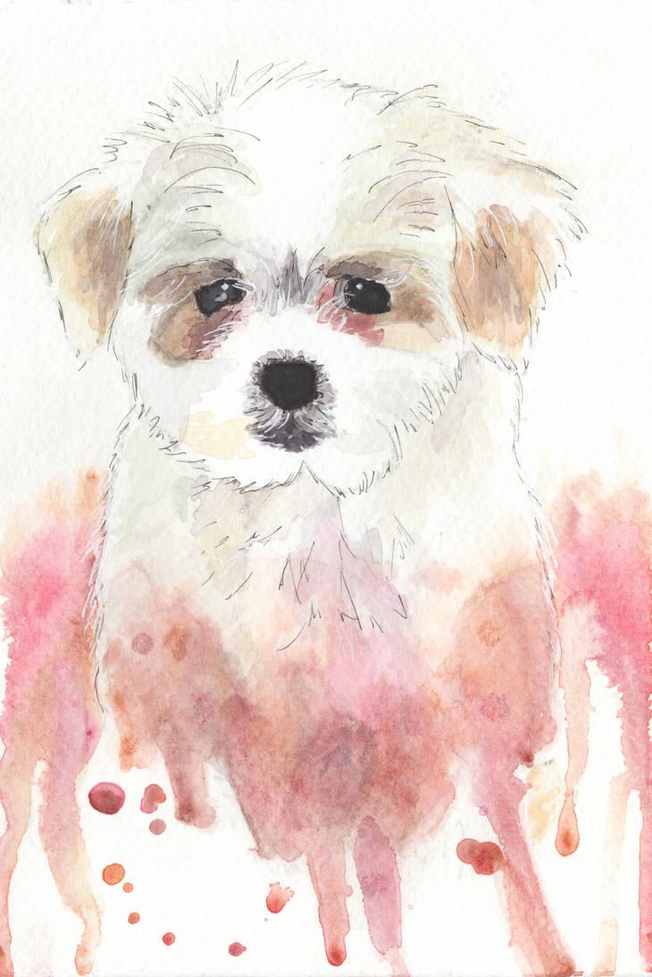 Gib pets!| Comissions OPEN
