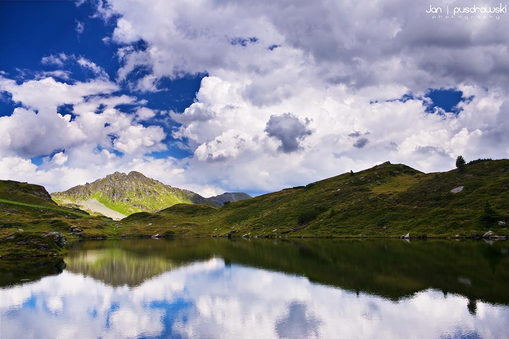 Wild Mountain Heath by JanPusdrowski