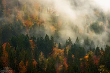Shimmering Radiance by JanPusdrowski