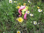 Fluttershy by cdarkwolf