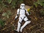 Stormtrooper and flower by cdarkwolf