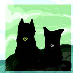 Goodbye, beloved cats. . .