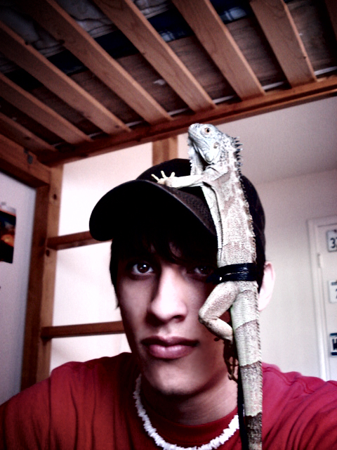 zarengo's Profile Picture