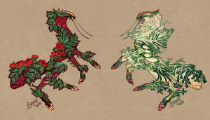 Matoto Adopts 4 Sale: Rose and Ornamental Cabbage