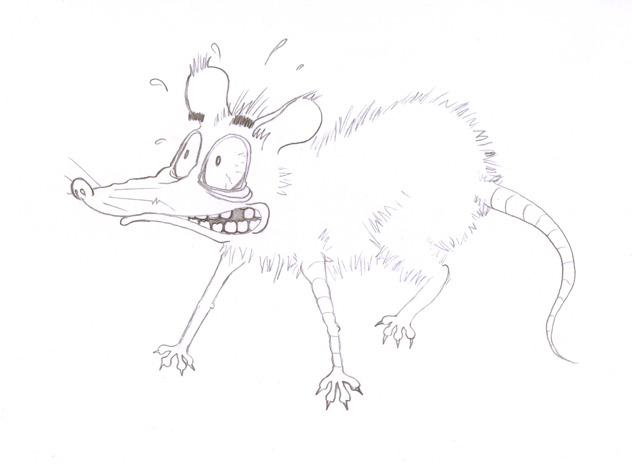 Line Drawing Rat : Anxious rat by scetxr efx on deviantart