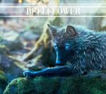 BellFlower by Penguiduck