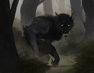 feral (commission)
