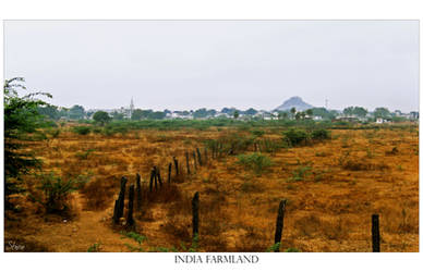 India Farmland by stwin