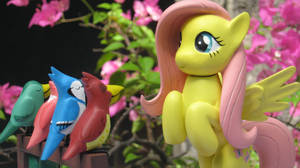 Thanks from Fluttershy