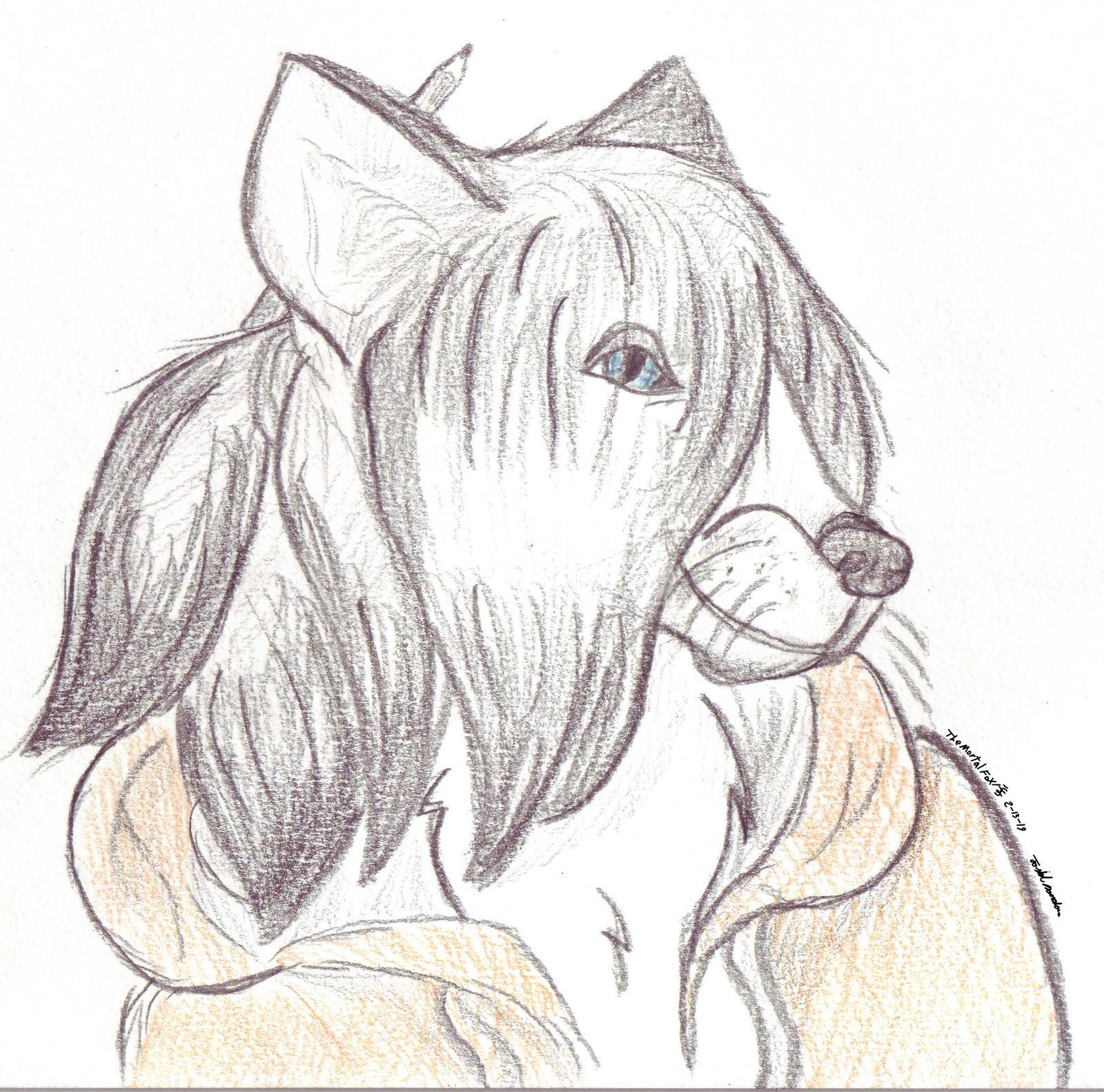 TheMortalFox's Profile Picture