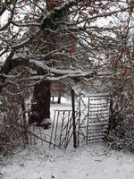 Untitled snow photo 5 by dilandou