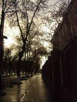 I walk alone.. by tim-tim-art