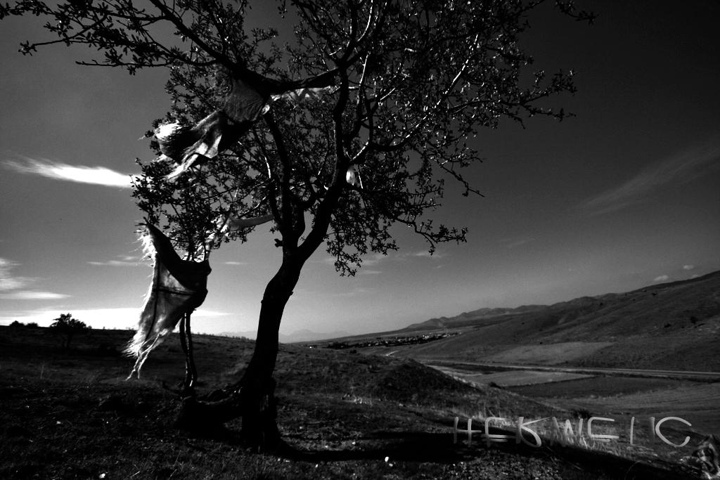 Aysel Yurtsever by Hermetic-Wings