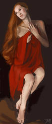 Red Cloth by gothicAge