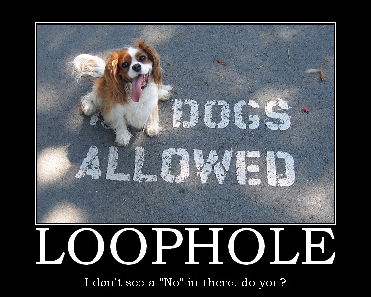 Image result for loophole