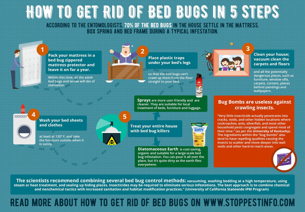 Bedbugtraps deviantart How to remove bed bugs from couch