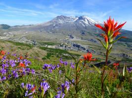 Mount St. Helens Caldera by JMPorter
