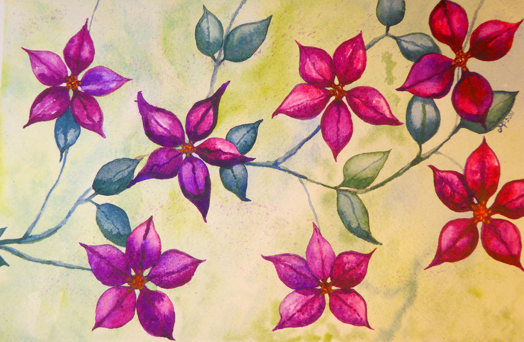 Clematis by JMPorter
