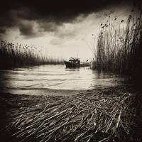 sorrow by agalip