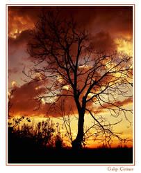 sundown by agalip