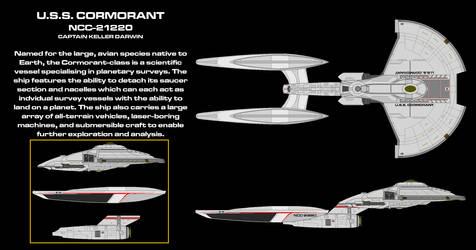 USS Cormorant