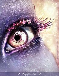 Sagittarius eye by ftourini