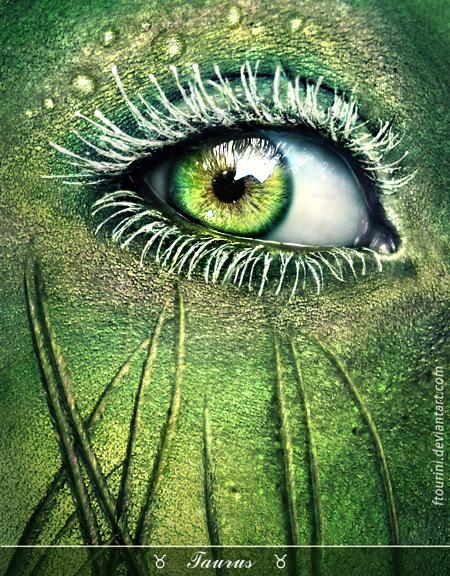 Taurus eye