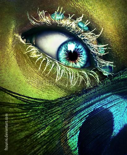 Peacock eye in love by ftourini