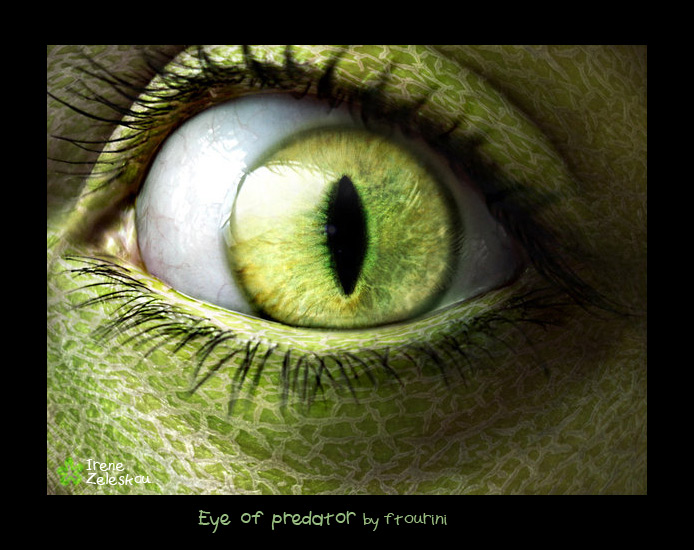 eye of a predator by ftourini