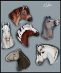 /YHH Doodles/ Horse Doodles - CLOSED -