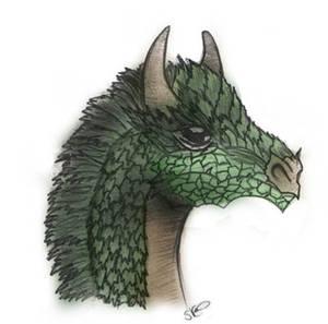 Dragon - in colour