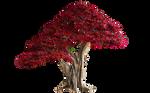 Bonsai Tree Texture [red]