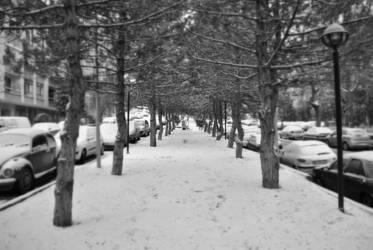 Tree-way by realtolife