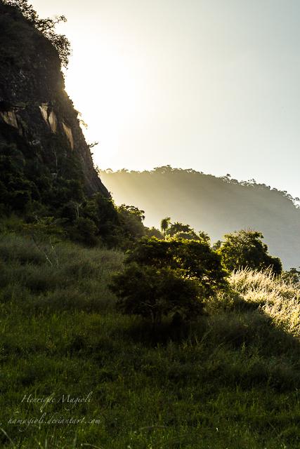 light of the fog by HenriqueAMagioli