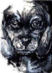 Puppy by density-tmr