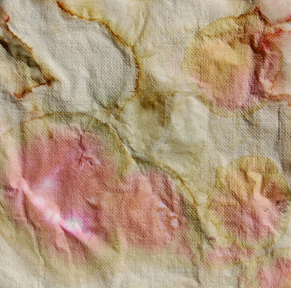 Stained Paper 2 by mcbadshoes