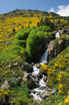 Vall d'Incles - Andorra II by Alberello-ART