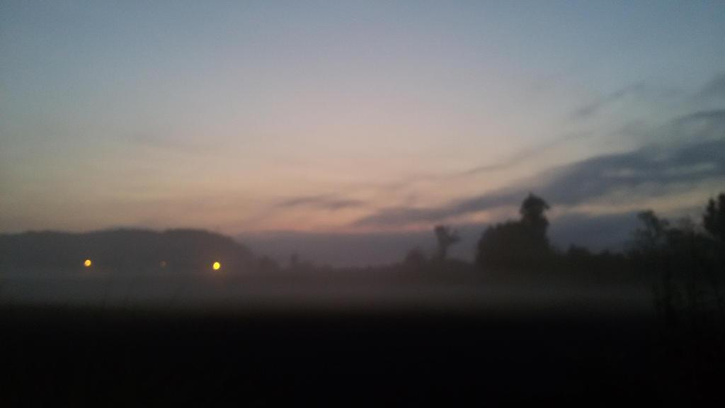 lichter im Nebel  by TheWolfLP